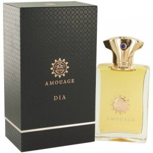 Amouage Dia EDP 100ml For Men